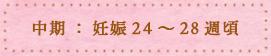 中期:妊娠24~28週頃